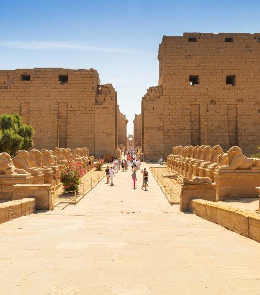 Egyptian Highlights